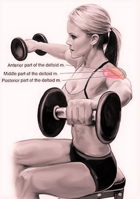 ejercicios isométricos hombro