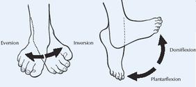 Rehabilitación de tobillo