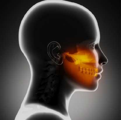 Articulación Temporo-Mandibular